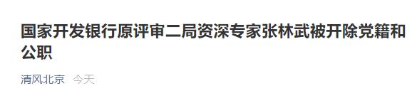 百事娱乐:国家开发银行原评审二局资深专家张林武被